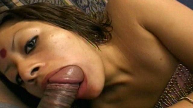 Stunning Indian Dickens Indra Sucking A Large Furry Schwanz With Lust